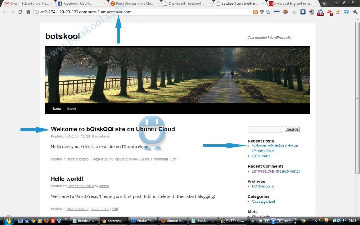 Ubuntu + wordpress home page