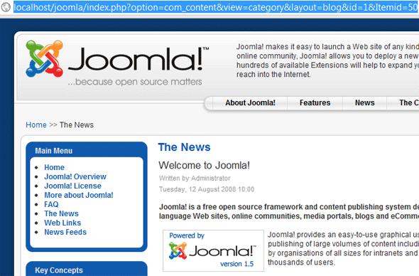 Default Joomla URL setting