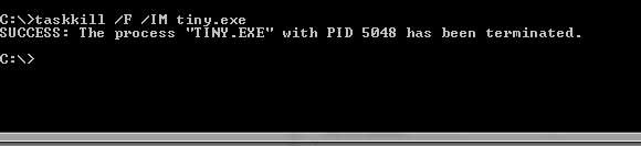 How to stop TinyWeb server via command line